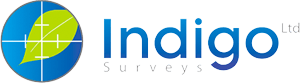 Indigo Surveys